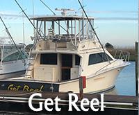 Get Reel